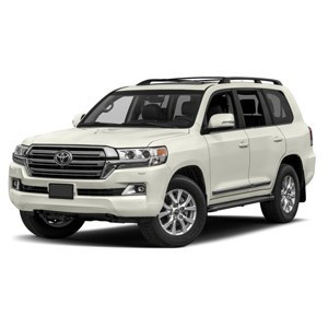 Pare-buffle Land Cruiser V8 (2012-)